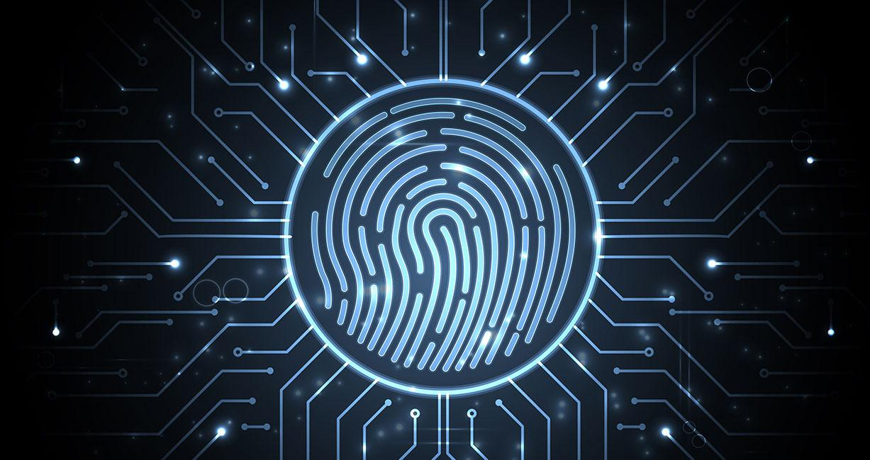 Mixed Signal SoC design for Biometric Finger Print authentication